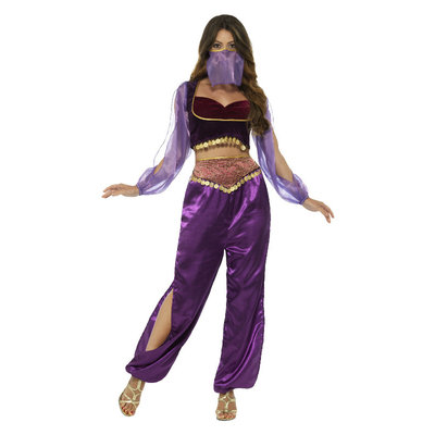 Arabische Prinses Kostuum - Paars