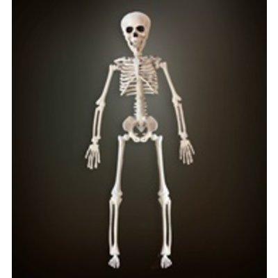 Skelet 40 cm