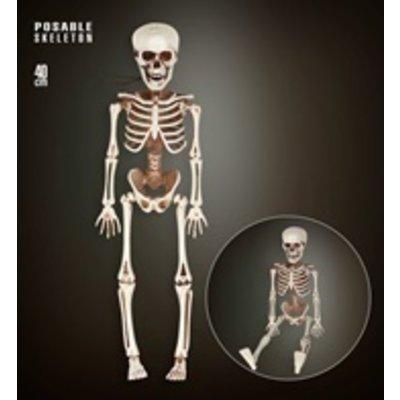Poseerbaar Skelet - 40 cm