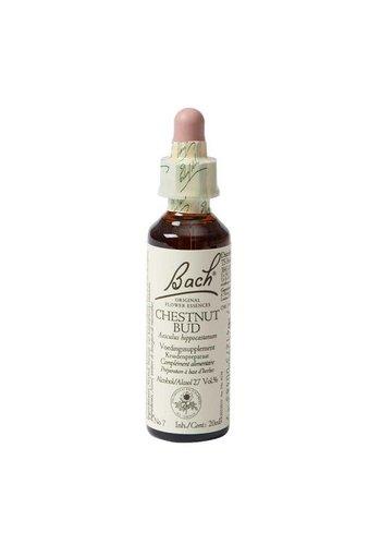 Bach Bloesem Bach Flower Remedie Chestnut Bud (20 ml)