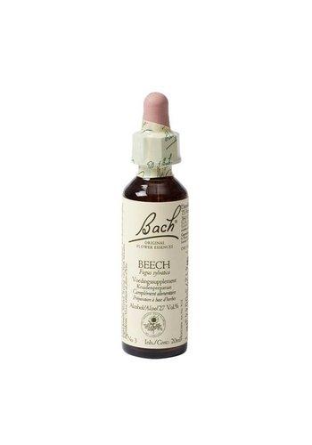 Bach Bloesem Bach Flower Remedie Beech (20 ml)
