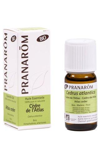 Pranarôm Etherische olie Atlas ceder BIO (10 ml)