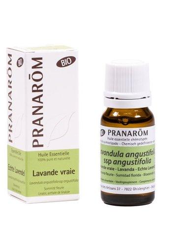 Pranarôm Etherische olie Echte lavendel BIO (10 ml)