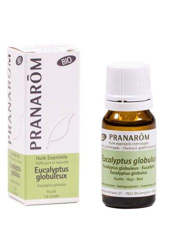 Pranarôm Etherische olie Eucalyptus globulus BIO (10 ml)