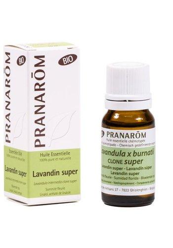 Pranarôm Etherische olie Lavandin super BIO (10 ml)