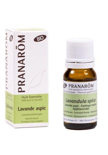 Pranarôm Etherische olie Spijklavendel BIO (10 ml)