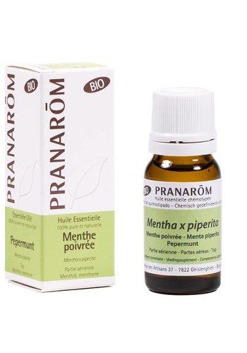 Pranarôm Etherische olie Pepermunt BIO (10 ml)