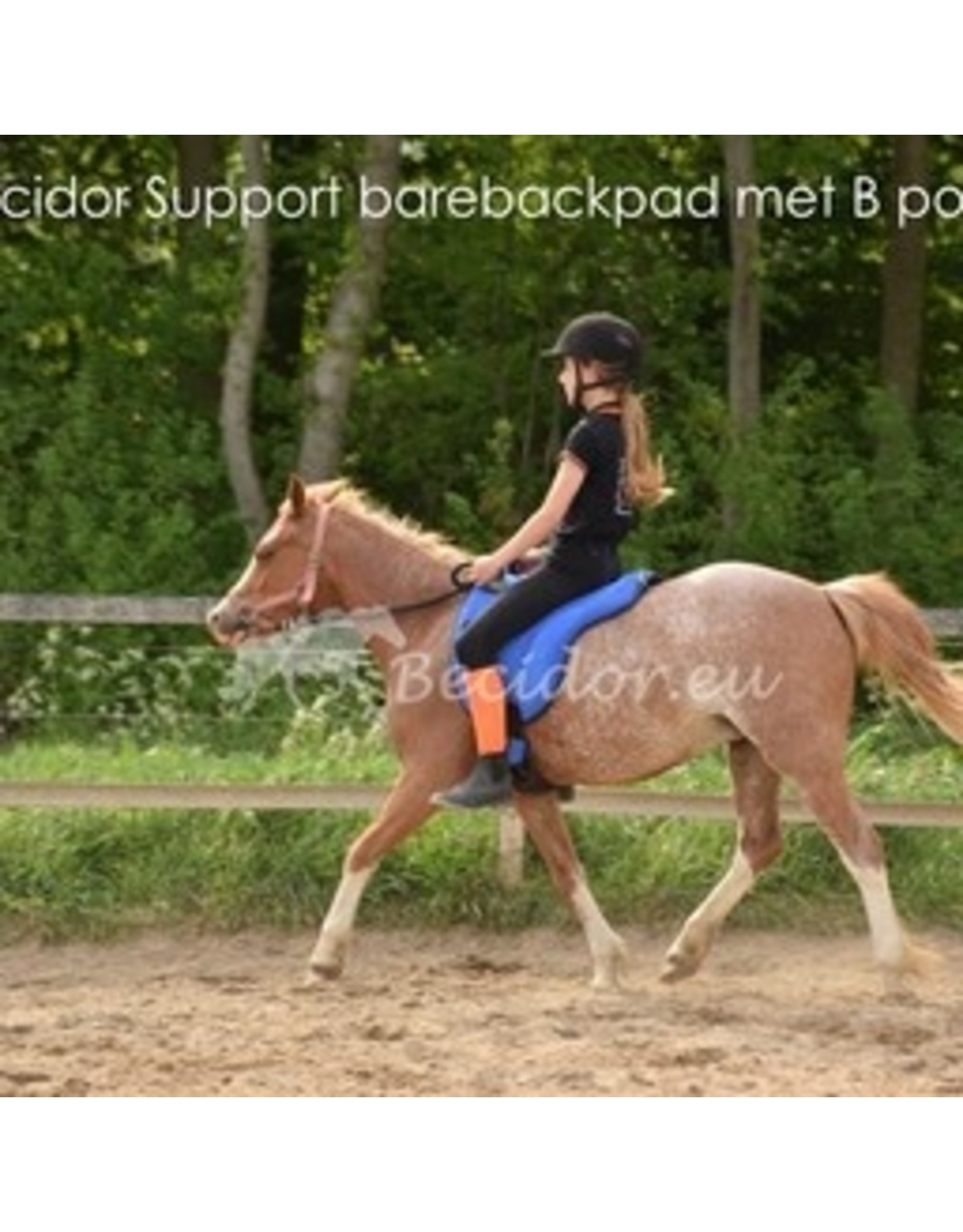 Becidor Barebackpad suède Support