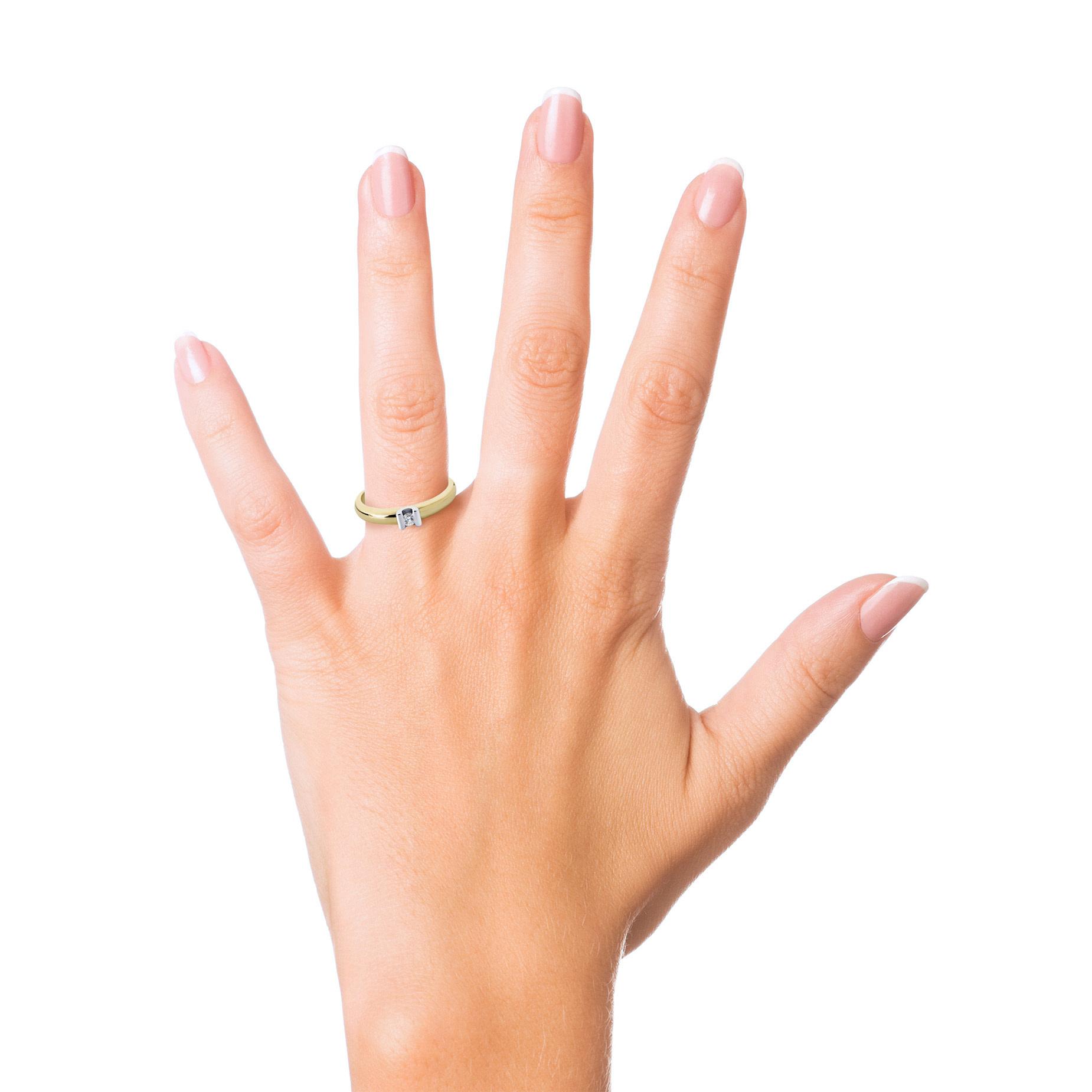 R&C R&C Geel- met witgouden ring Camillie met 0,03ct Wsi