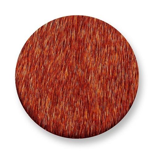 Mi Moneda Munt Mimoso Orange medium
