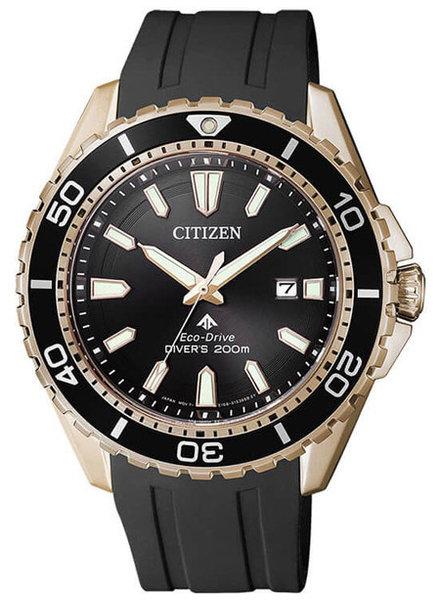 Citizen Citizen horloge Promaster BN0193-17E
