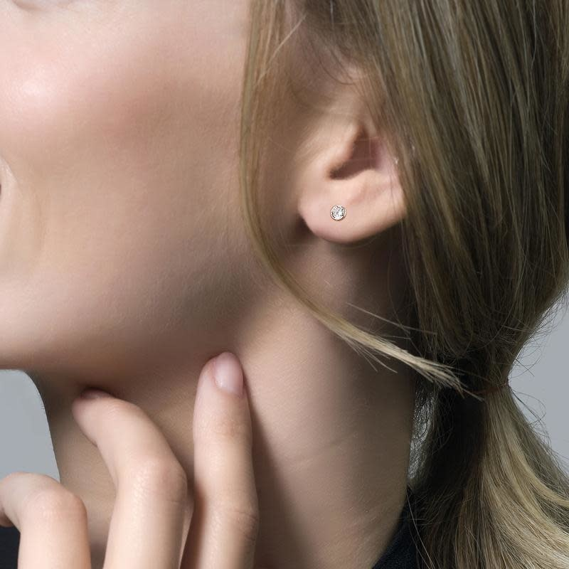 Blush Blush oorstekers 7257RZI