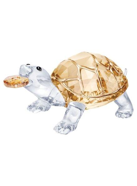 Swarovski Swarovski kristal Schildpad 5552917