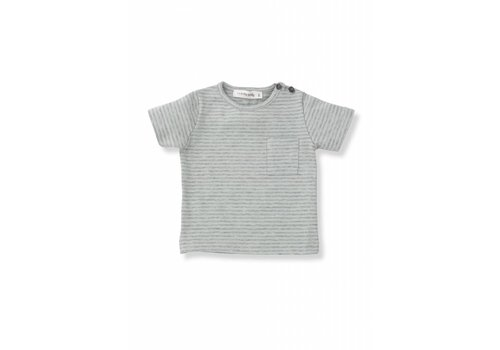 1+ In The Family 1+In The Family T-Shirt Aqua - Grey Stripes