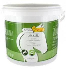 ANIMAVITAL Zeewier/ Seaweed 3kg