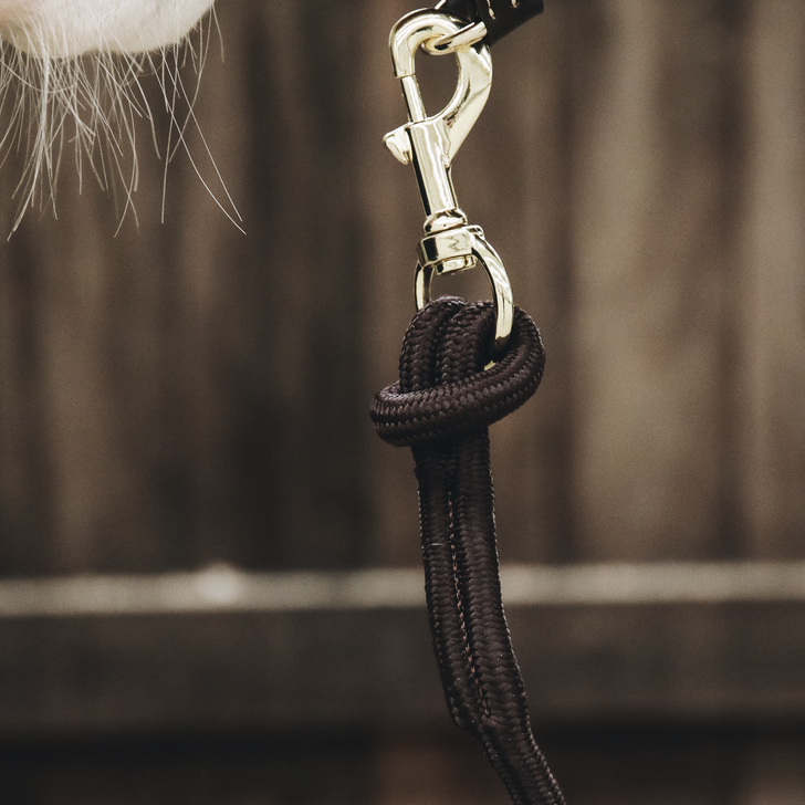KENTUCKY KENTUCKY lead rope loop