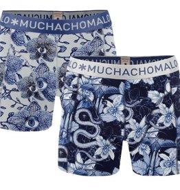 Muchachomalo Muchachomalo 1010BALLPX04 2-Pack Multi