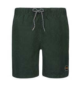 SHIWI Shiwi Mike Solid Swim Short Seaturtle Green