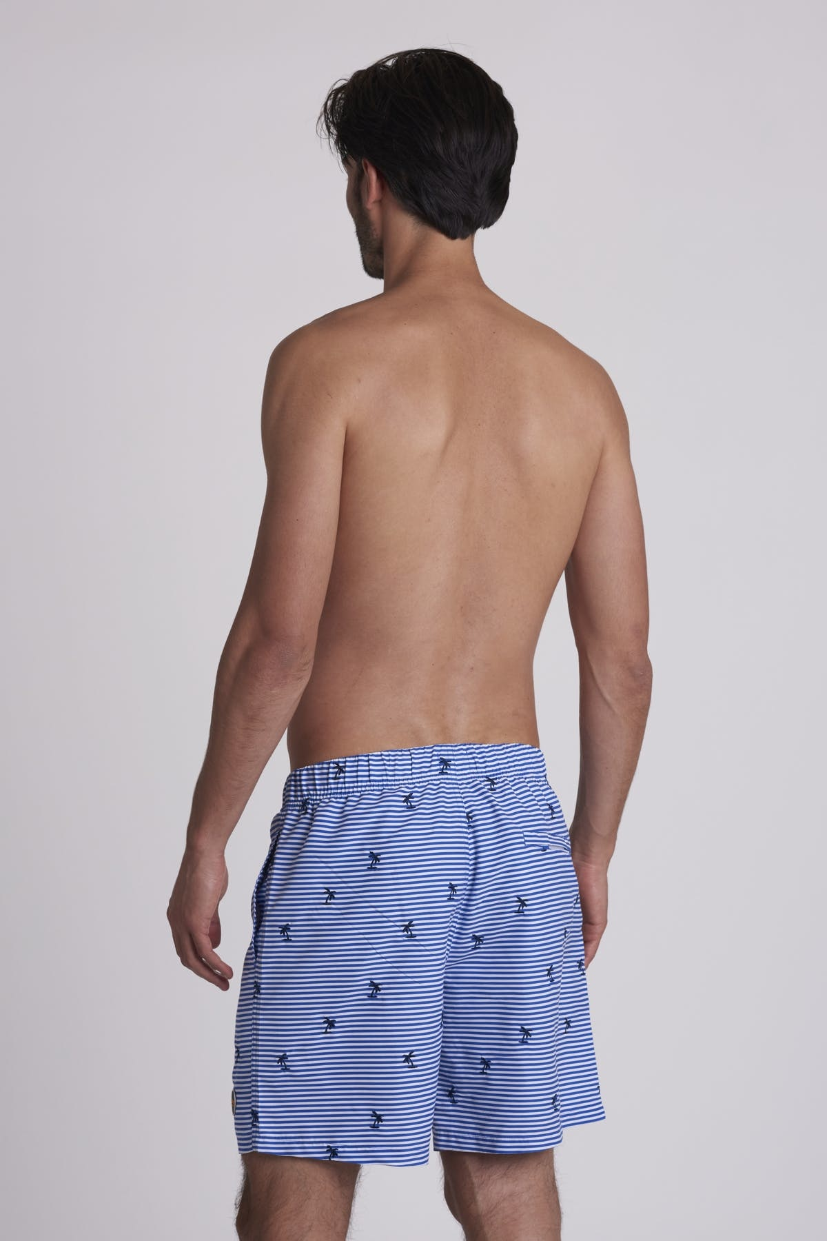 SHIWI Shiwi Striped Palm Swimshort Bali Blue