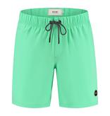 SHIWI Shiwi Easy Mike 4-Way Stretch Swim Short Pappagallo Green
