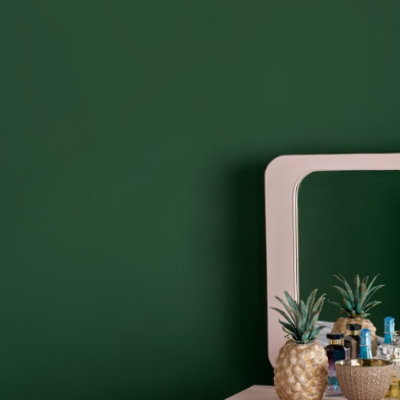 Annie Sloan Wallpaint, Amsterdam Green: 2,5l - 100 ml 100ML