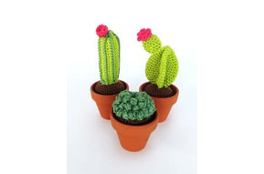 Haakpakket Cactussen