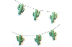 Wolvilt Slinger Cactussen