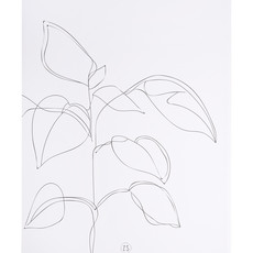 A3 poster plant