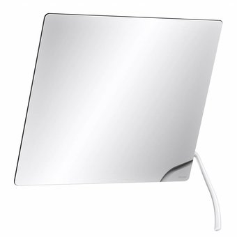 DELABIE Kantelbare spiegel met lange hendel wit nylon van Delabie