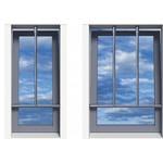 SecuBar window security