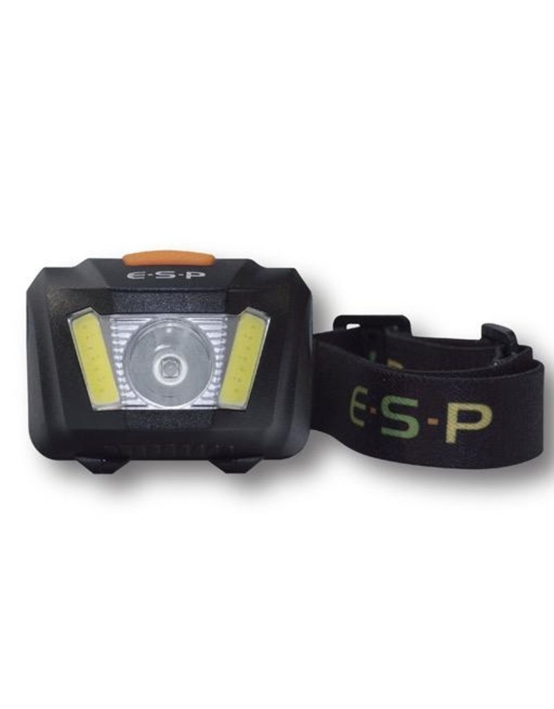 ESP ESP Flood Light