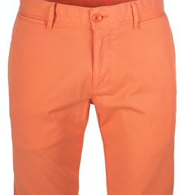 Roy Robson Orange Tailored Cotton Short