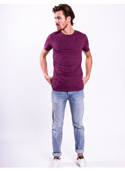 Colourful Rebel Colourful rebel, Basic tee AOP, Prune