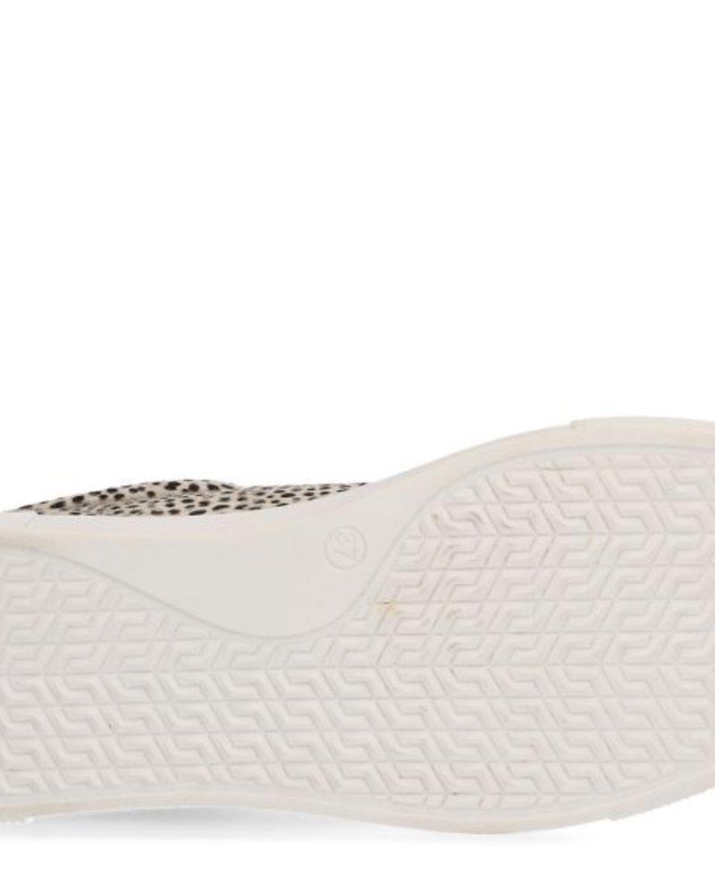 Maruti Maruti, Ted pixel, Off white