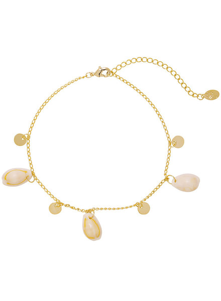 YW, Anklet Beach Shells, Gold
