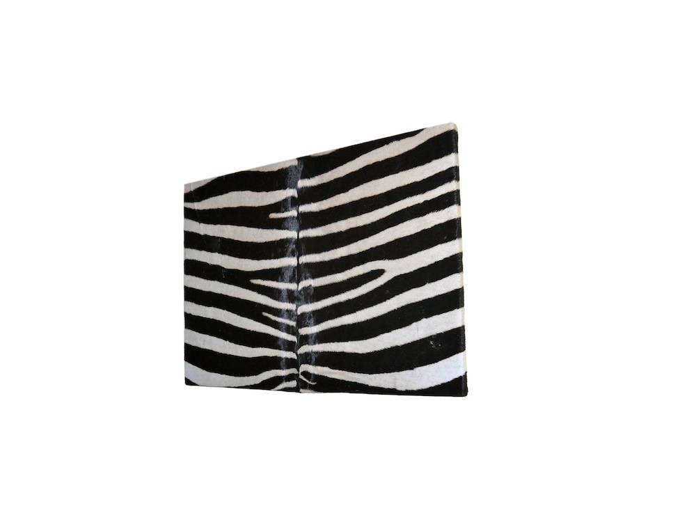 Zebra Bild aus echten Zebrafell