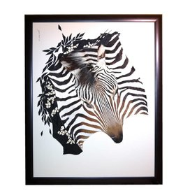 African wild Zebra