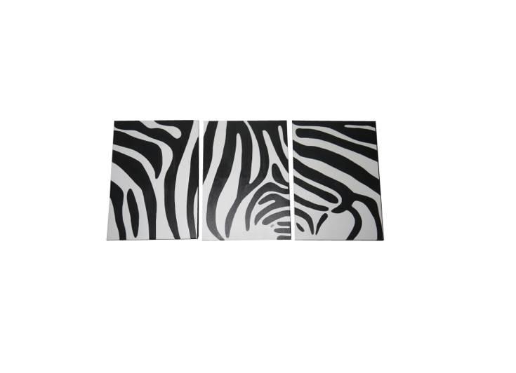 Zebra Bild Stripes