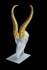 Springbockschädel wurde mit ca. 4100 Swarovski Steinen