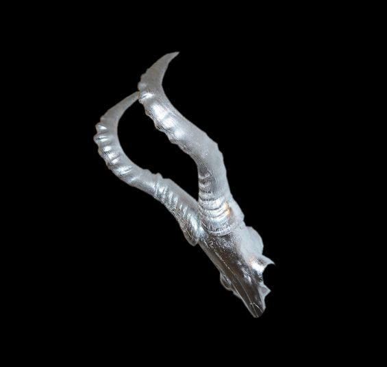 Antilope in Silber