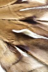 Springbockfell Teppich CIRCEL T009
