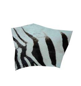 Zebrafell Reststück R016