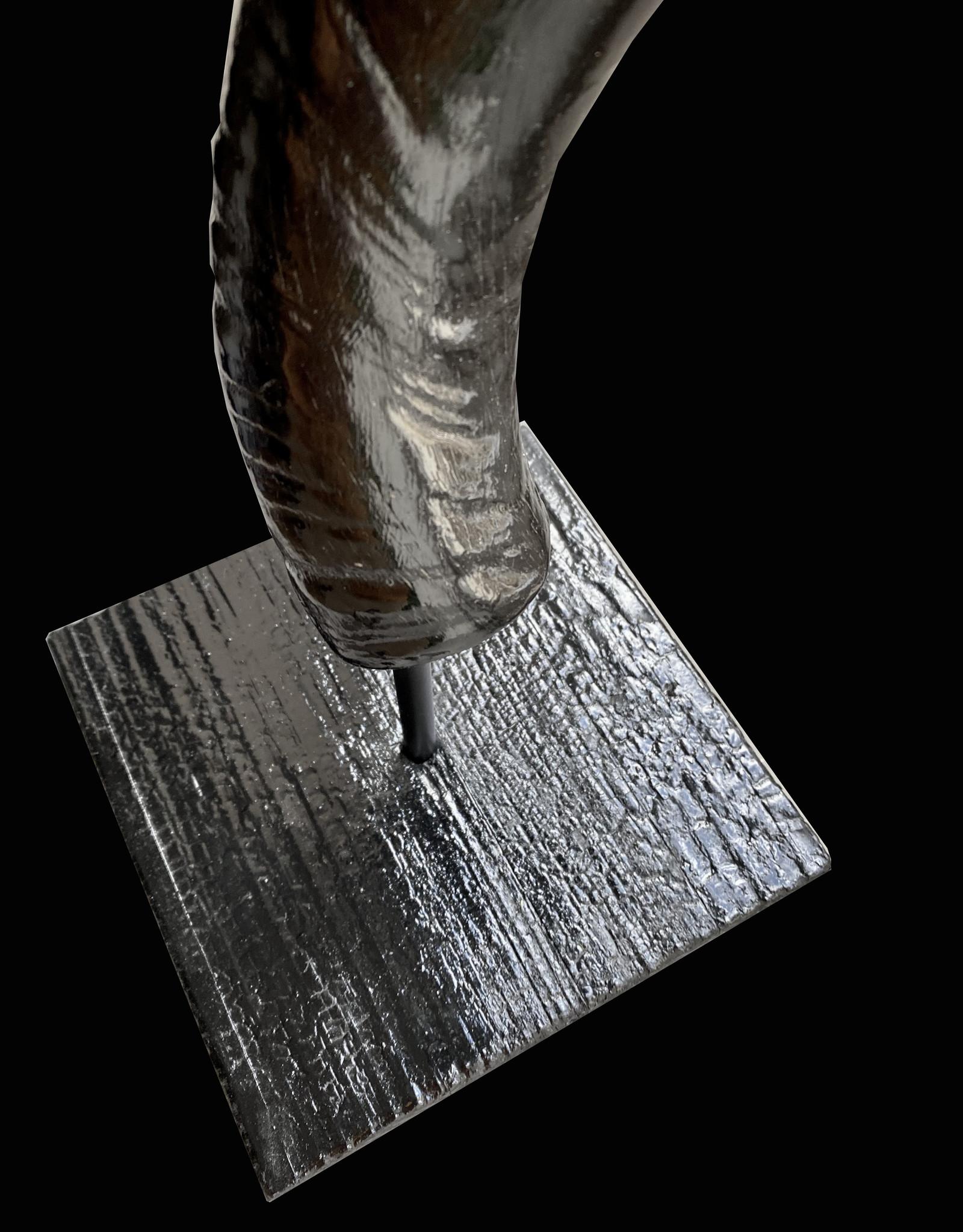 Kuduhorn mit speziellen Stand