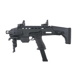 APS Black Hornet Semi & Auto Co2 avec Conversion GBB 1,33 Joule - BK