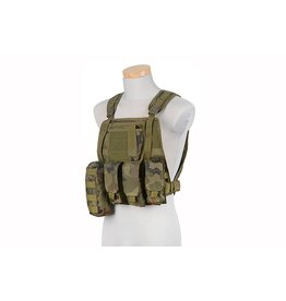 ACM Tactical Gilet tactique Type MBSS Plate Carrier - Wz.93 WL Panther