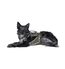 Primal Pet Gear Tactical Dog Harness - RG