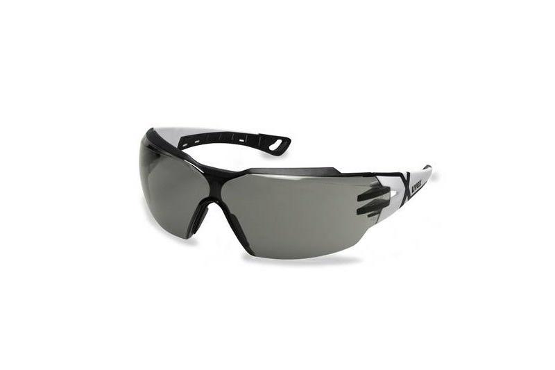 UVEX Pheos CX2 Lunettes - noir/teinté