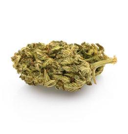 CBD Express Premium Gorilla Glue - CBD organic blossom aroma tea