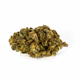 CBD Express Premium Skywalker OG - CBD organic blossom aroma tea