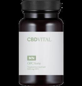 CBD Vital OPC FORTE Traubenkernextrakt (60 Kapseln)